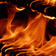 לשתףבדצמבר 2010 התרחשה בכרמל שריפת יער נרחבת הידועה מאז כאסון הכרמל. התקשורת עקבה בדריכות ודיווחה על התקדמות השריפה ומאמצי הכיבוי, לצד ביקורת נוקבת על מקבלי ההחלטות ומסקנות מהאסון. בתקופה זו […]